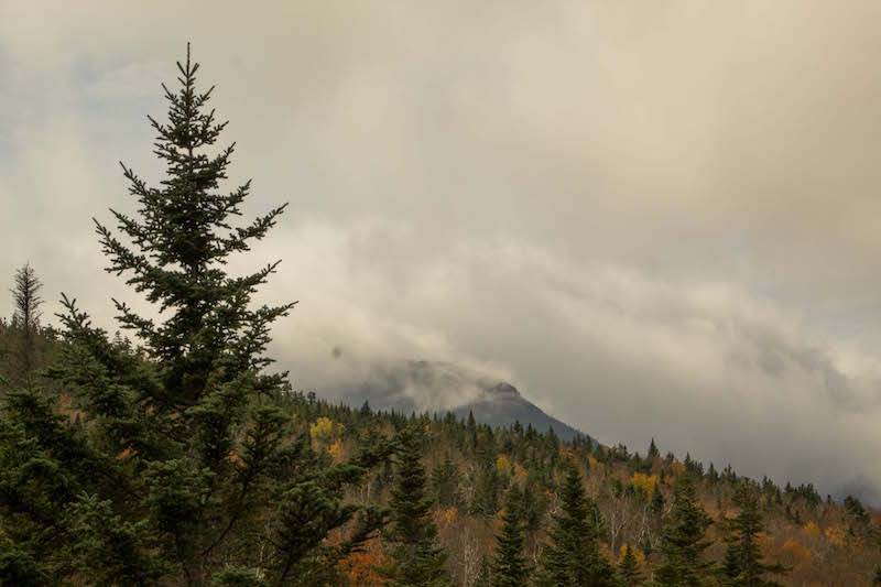 White Mountains in the clouds